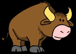 Understanding the Bull